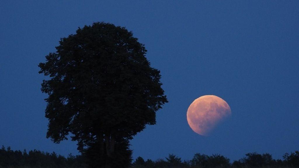 Mond Und Mars In Rot Astronomischer Sommernachtstraum News