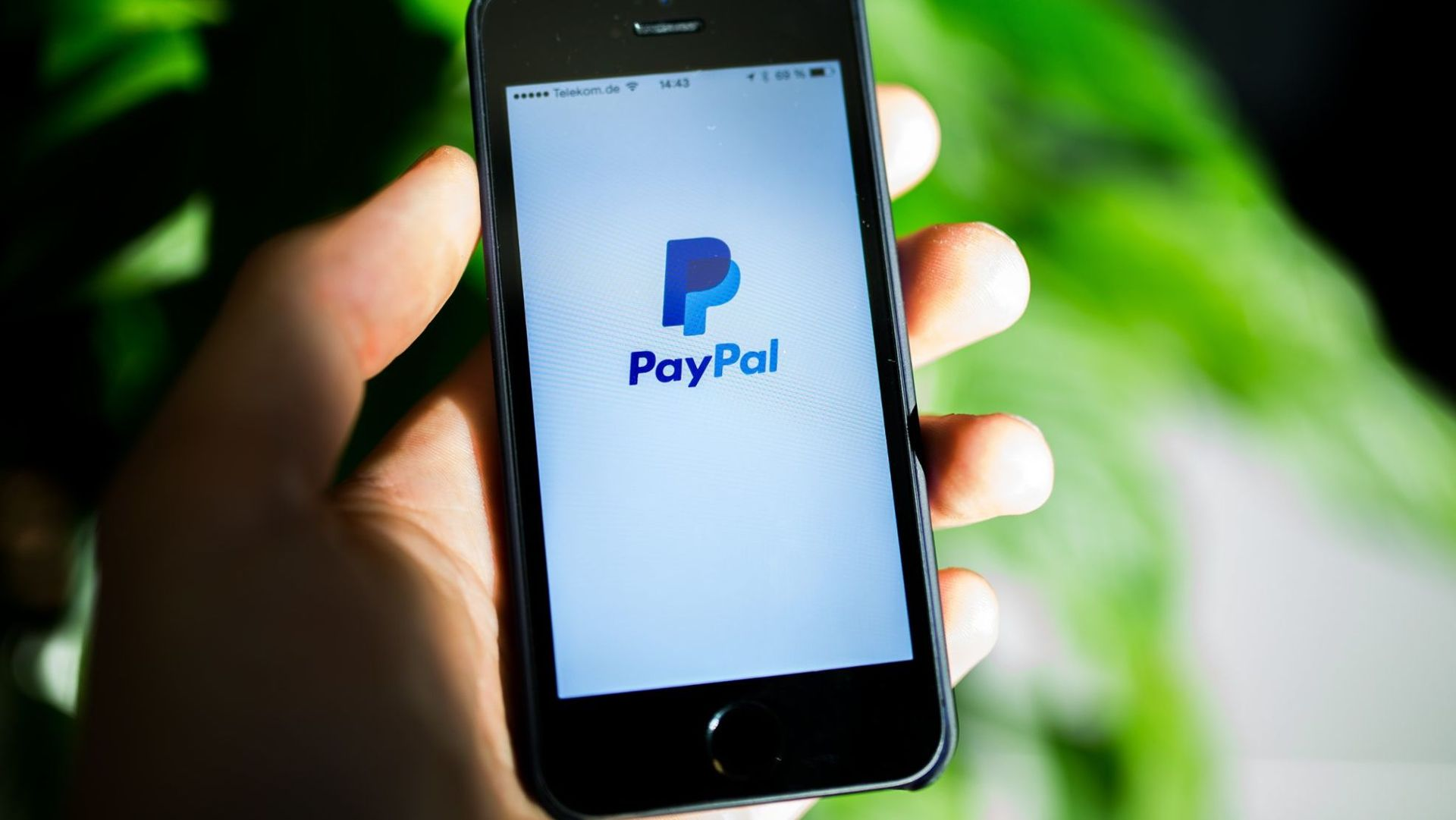 Paypal Freunde Familie